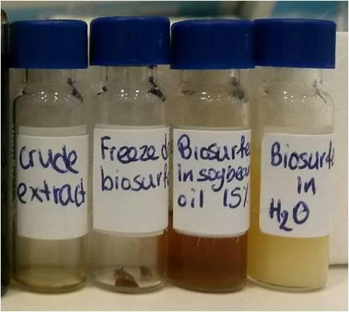 biosurfer products